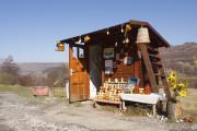 Alpine honey Satu Mare