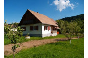 House for rent Sandor Izvoare