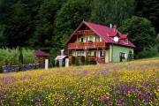 Vila Sólyomkő Bixad, Cazări Bixad