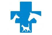 B & T Állatorvosi gyógyszertár Nyárádremete, Szolgáltatások Nyárádremete