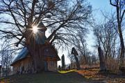 Capela De Lemn Şi Cel Mai Vechi Copac Viu Din Transilvania Eremitu, Timp liber Ţinutul Secuiesc