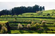 Csíky-Kert Dendrológiai Park Gyergyószentmiklós, Szabadidő Székelyföld