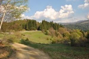 Vârful Pilişca