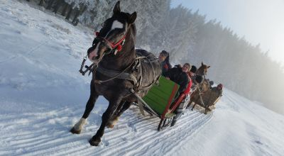 Sleigh ride in Lazaresti
