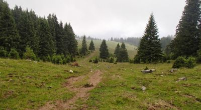 Half day trekking in Bucegi Mountains - version 2