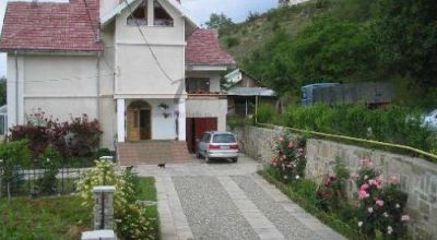 Pension Ambiance Piatra Neamt