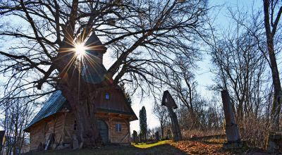 Saint John the Baptist Wooden Chapel, the oldest tree in Transylvania Eremitu