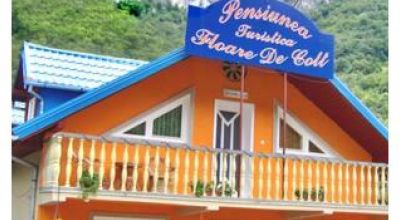 PENSION FLOARE DE COLT Baile Herculane