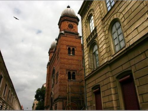 The Synagogue From The Fortress Timisoara
