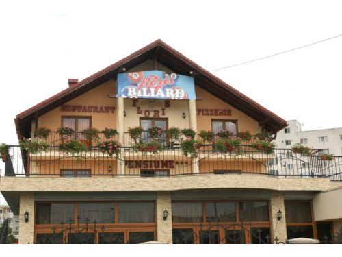 Pension Floris Baia Mare (Frauenbach)